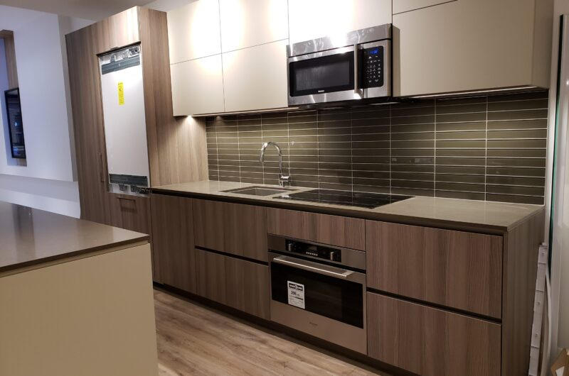 custom kitchen with build in appliance - cabinets doors kitchen