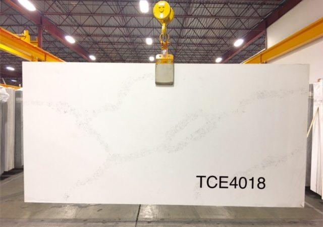 TCE4018