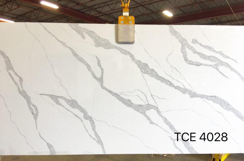 TCE4028